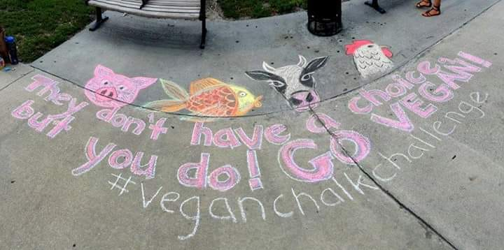 Vegan Chalking Night